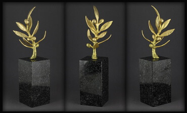 """Programos """"Olimpinė karta"""" apdovanojimai"""